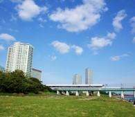多摩川を越える田園都市線。緑がいっぱいだ