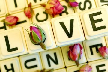 俳句, 合コン, 恋愛, 恋愛の悩み, 悩めるオンナたち