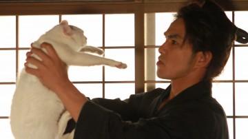 猫侍,北村一輝