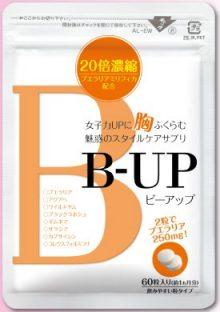 「B-UP(ビーアップ)」