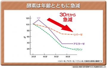 酵素は年齢とともに急減