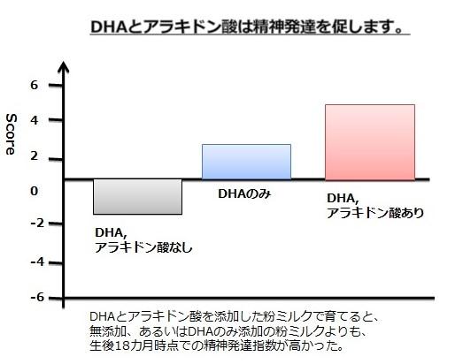 【グラフ】DHAとアラキドン酸は精神発達を促します。