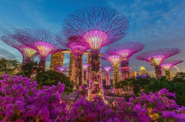 シンガポールの植物園「ガーデンズ・バイ・ザ・ベイ」