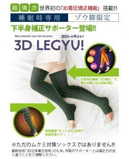 3Dレッギュ