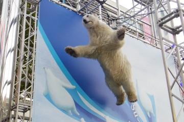 宙に浮く白クマ(3)