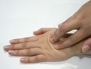 手の甲を使って頭の皮膚を動かすシミュレーション