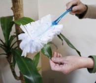 ウェーブ ハンディワイパー:大きな葉の観葉植物を掃除