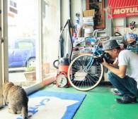 ぽちゃ猫ワンダー(9)