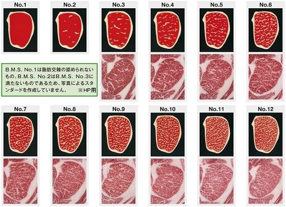 牛肉の格付3