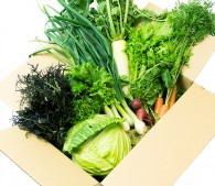 お取り寄せ野菜・果物