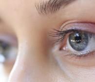 瞳孔を囲む放射状の模様が虹彩