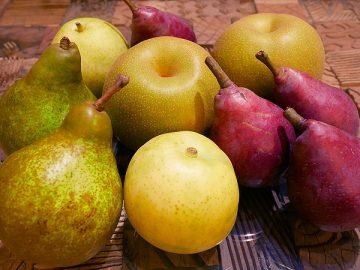これからが旬の梨