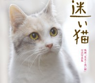 迷い猫表紙