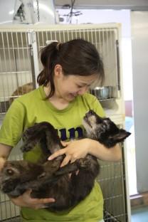熊本市動物愛護センター