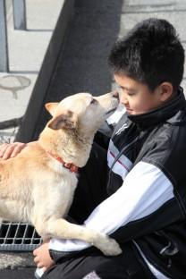 熊本市動物愛護センターの譲渡会