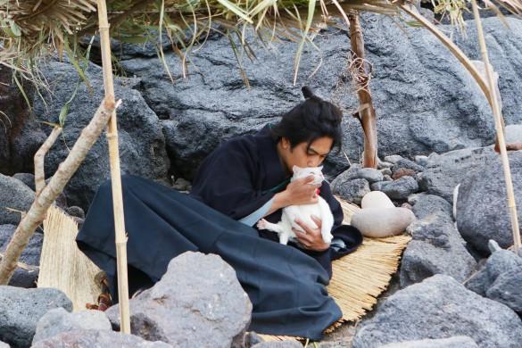 『猫侍 南の島へ行く』より_6