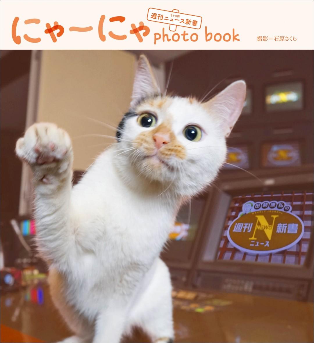 にゃーにゃ photo book form 週刊ニュース新書