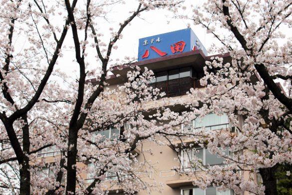 ホテル八田HPフォトギャラリーより