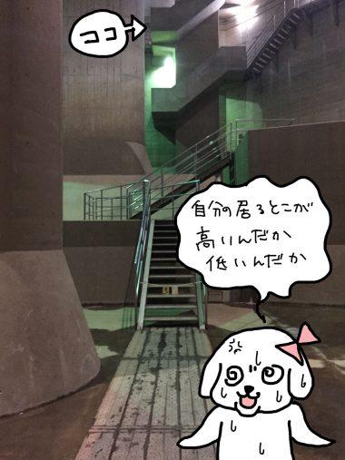 地下神殿の天井部分
