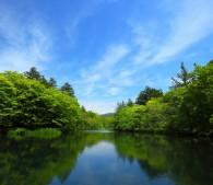 絶好の散歩道・雲場池は軽井沢駅から徒歩20分。つまり都心からわずか1時間半