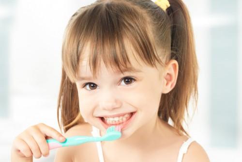 菌 歯磨き粉 ブリス
