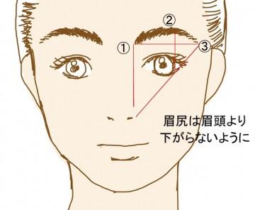 眉のポイント
