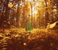秋の林の中の女性