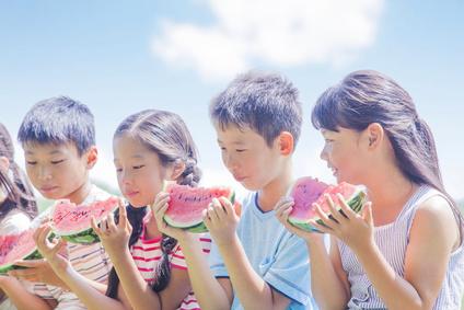 小学生の夏休み