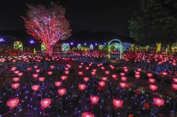 あしかがフラワーパーク「光の花の庭」(栃木県足利市)