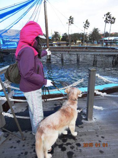 ケフィ水族館