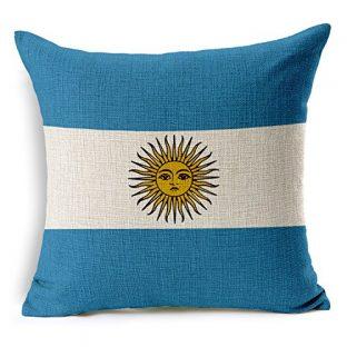 アルゼンチンの旗のクッションカバー