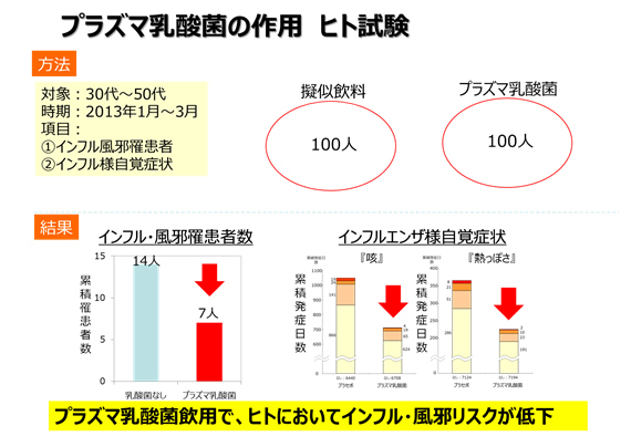 プラズマ乳酸菌の作用 ヒト試験