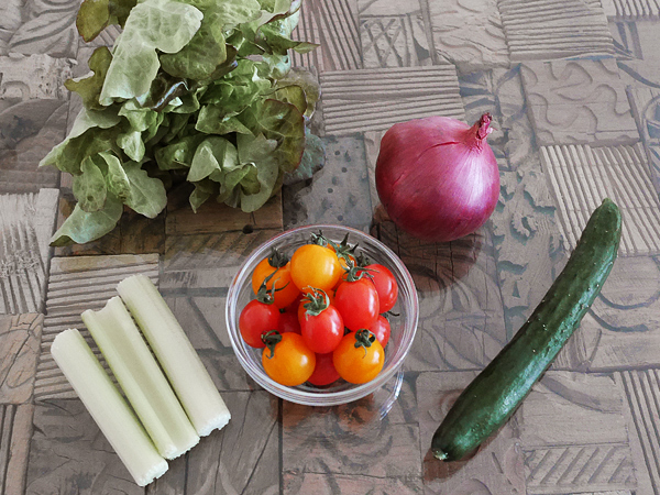 食材(トマト、キュウリ、紫玉ねぎ、セロリ、レタス)