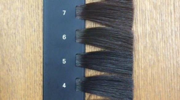 カラースケール 髪の明るさ 4~7レベル