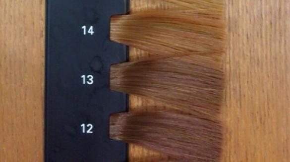 カラースケール 髪の明るさ 12~14レベル