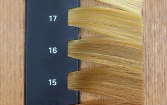 カラースケール 髪の明るさ 15~17レベル