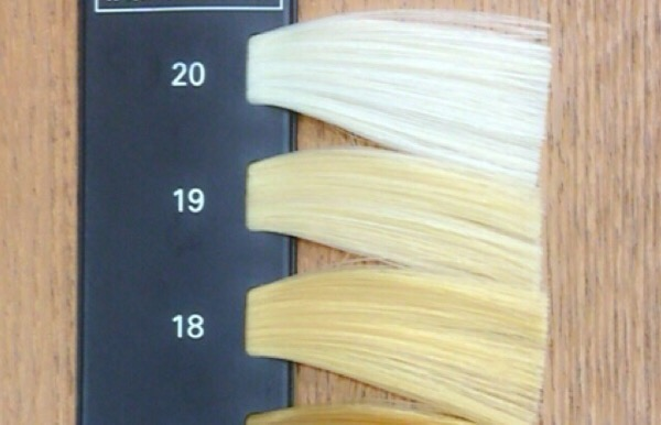 カラースケール 髪の明るさ 18~20レベル