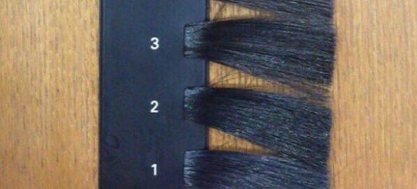カラースケール 髪の明るさ 1~3レベル
