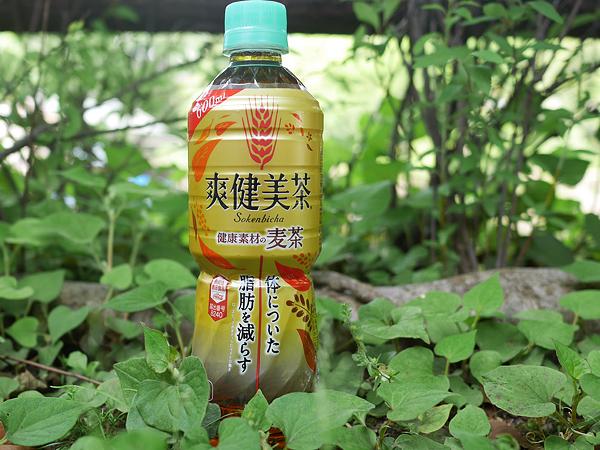 爽健美茶 健康素材の麦茶(日本コカ・コーラ)