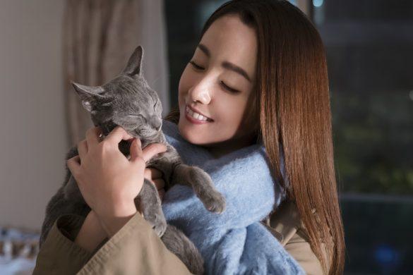 『猫は抱くもの』より