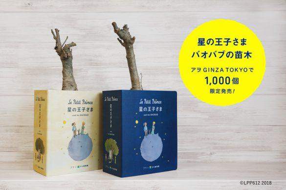 銀座ソニーパーク「星の王子さま」バオバブの苗木