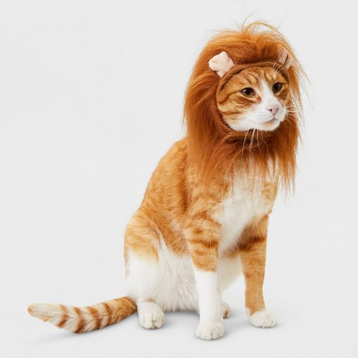 Cat Costume - Lion - Hyde and Eek! Boutique