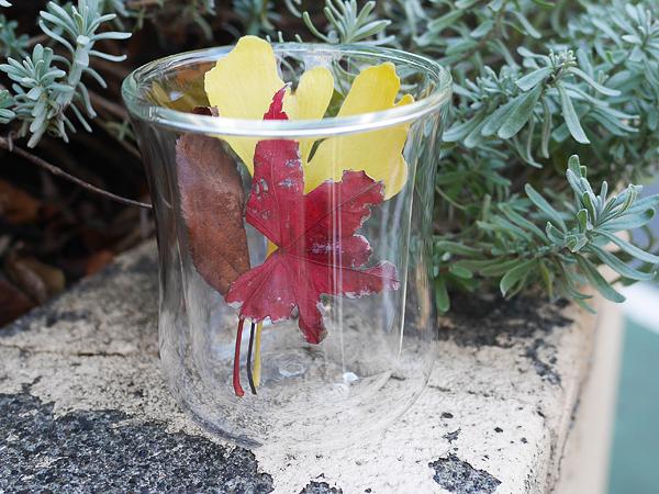 ハリオ ダブルウォールグラス(※新商品はデザインが少々異なります)2200円(税別)
