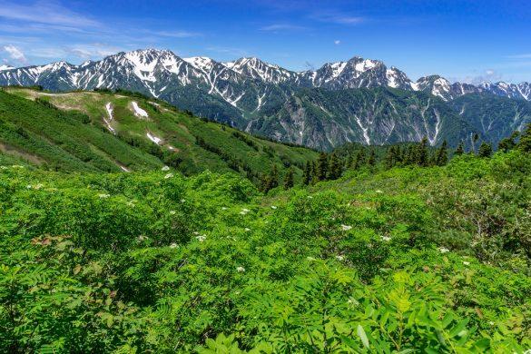自然豊かな富山。写真は立山連峰