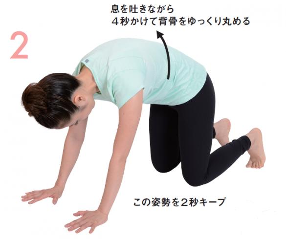 ゆる関節ストレッチ①背骨を丸めるて息を吐く
