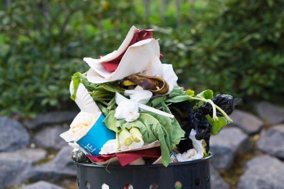 食品廃棄物(ゴミ)