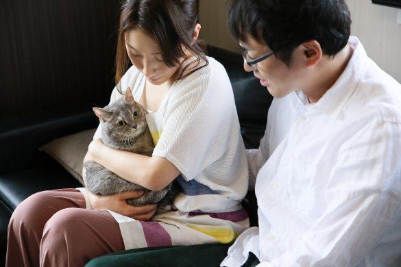 猫が恋のキューピットになった夫婦