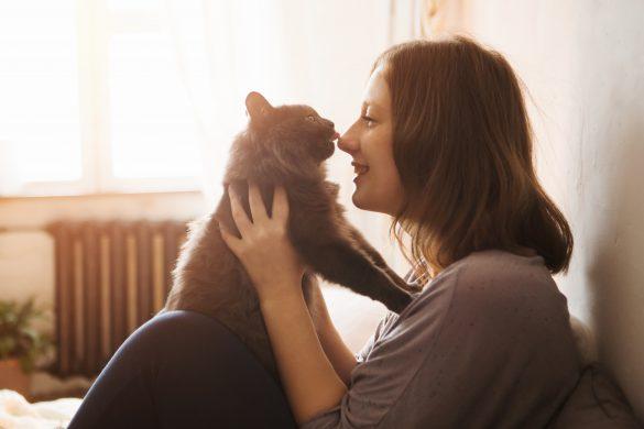 ネコを飼うと結婚できないって本当?