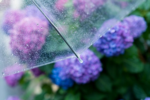 「梅雨太り」する人がやりがちな4つの行動。冷たいものを食べすぎるetc