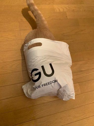 gucat5